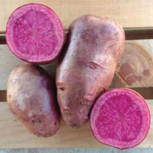 all-red-seed-potato-cut