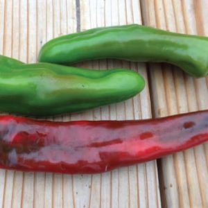 Anaheim-Chili-Pepper-Seeds.jpg