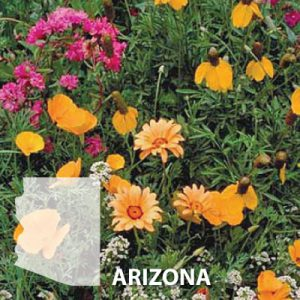 Arizona-Wildflower-Seed.jpg