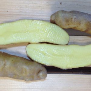 Banana-Fingerling-Seed-Potatoes-Cut.jpg