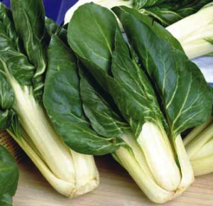 Barese, Swiss Chard Seeds - Urban Farmer Seeds