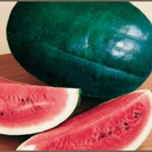 Black_Diamond_Watermelon.jpg