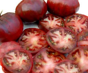 Black_Sea_Man_Tomato_Seeds.jpg