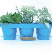 blue-herb-garden-kit