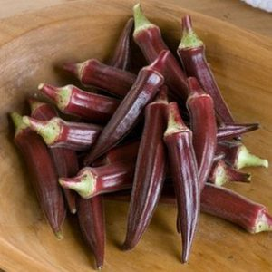 burgundy_okra_seeds
