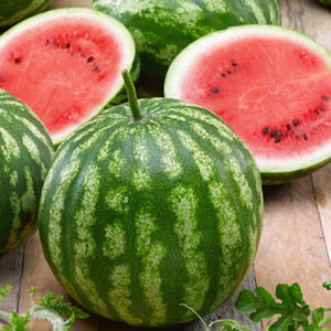 Cal Sweet Bush Watermelon