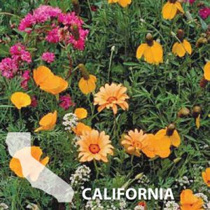 California-Wildflower-Seed.jpg