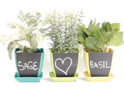Chalk Pot, Herb Kits - Urban Farmer Seeds