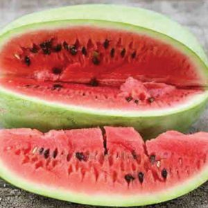 Charleston-Grey-Watermelon-Seeds.jpg