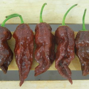 Chocolate-Ghost-Peppers.jpg