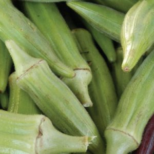 clemson-spineless-okra-seeds