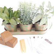 Delightful Copper Culinary Herb Garden Starter Kit