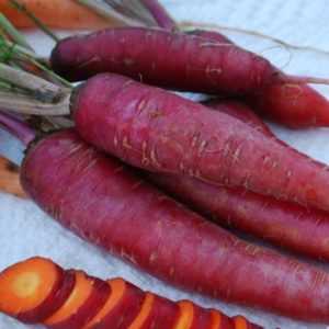 Dragon Carrot