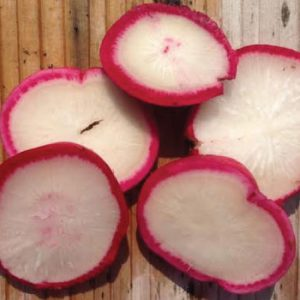 Early-Scarlet-Globe-Radish-Seeds.jpg