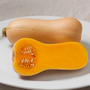 Early_Butternut_Squash_Seeds.jpg