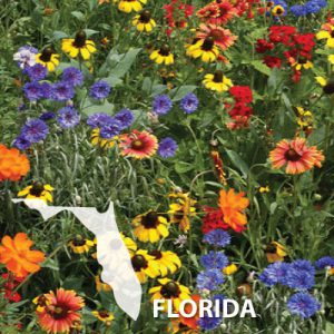Florida-Wildflower-Seed.jpg