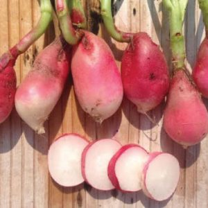 French-Breakfast-Radish-Seeds.jpg