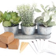 Galvanized-Full-Herb-Seeds-Kit.jpg