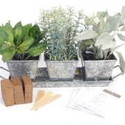 Galvanized-Metal-Complete-Herb-Kit.jpg