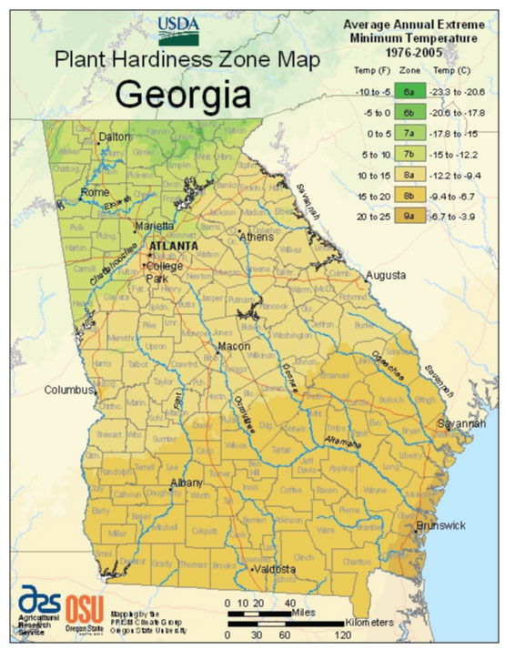 Georgia Zone Hardiness Map