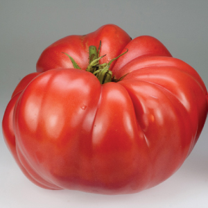 German-Giant-Tomato-Seeds.jpg