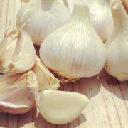 German-Porcelain-Garlic-Cloves.jpg