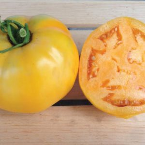 golden-jubilee-tomato-seeds