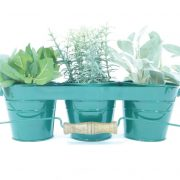 green-herb-garden-kit