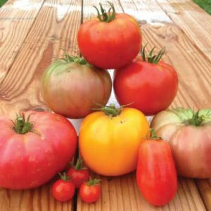 Heirloom-Blend-Tomato-Seeds.jpg