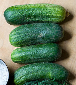 HomemadePicklesCucumber.jpg