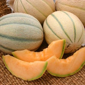 Honey_Rock_Melon_Seeds.jpg