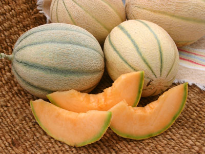 Honey Rock Melon Seeds Urban Farmer Seeds A total of ten cases have been confirmed in new south wales. honey rock melon seeds