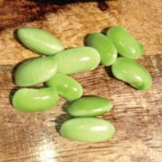 Jade-Bean-Seeds.jpg