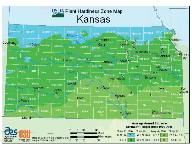 Kansas Vegetable Planting Calendar Urban Farmer Seeds