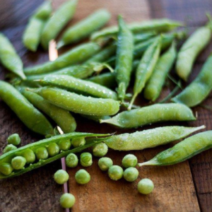Knight Pea Seeds