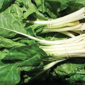 Large-White-Stem-Chard.jpg