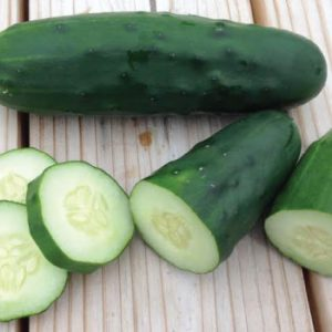 marketmore-76-cucumber-seed