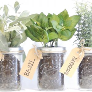 Mason-Jar-Herb-Kit.jpg