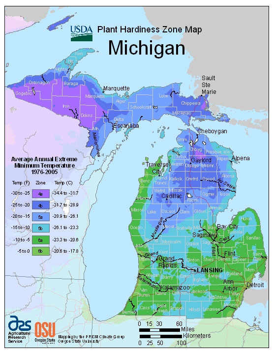 Michigan Zone Hardiness Map