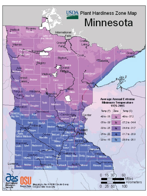 Minnesota Zone Hardiness Map