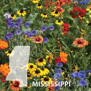 Mississippi-Wildflower-Seeds.jpg