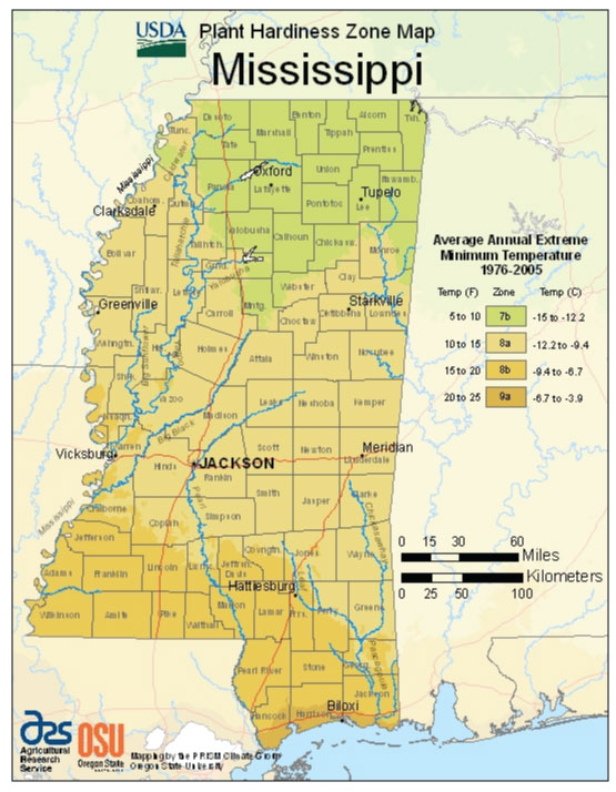 Mississippi Zone Hardiness Map