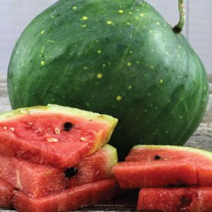 Moon-and-Star-Watermelon-Seeds.jpg