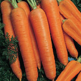 Napoli-Carrot-Seeds.jpg