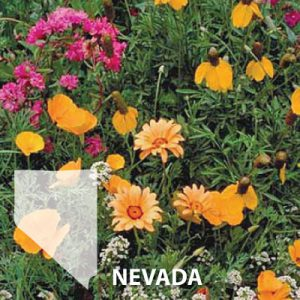 Nevada-Wildflower-Seed.jpg