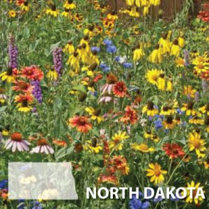 North-Dakota-Wildflower-Seed.jpg