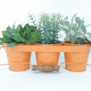 orange-herb-garden-kit