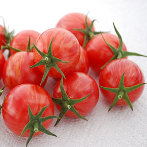 Pink-Bumble-Bee-Tomato-Seeds.jpg