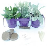 Purple-Metal-Planter-Handle.jpg