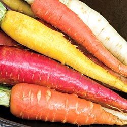 rainbow_mix_carrots